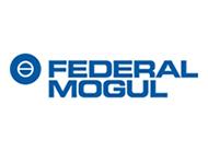logo_federal